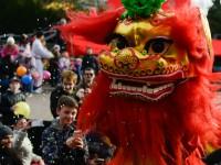 数万人在布拉格感受正宗中国年味儿